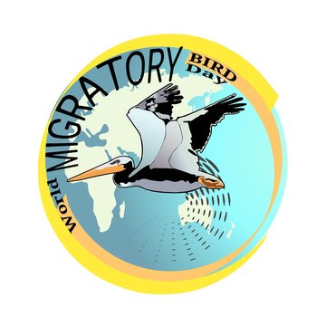 Illustration vector graphic of World Migratory Bird Day on May, 8. Perfect for poster, banner or brochure.