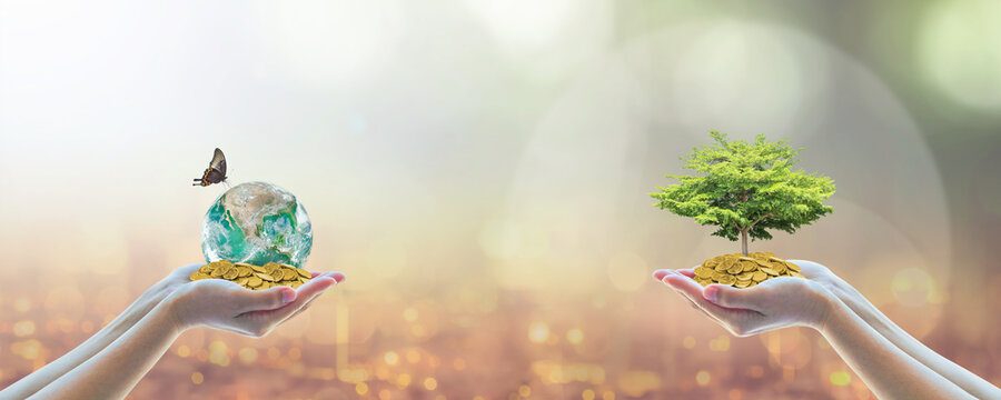 Environment, social, governance (ESG) and CSR sustainable global business investment in clean industry concept with volunteer hands holding world green tree. Element of the image furnished by NASA.