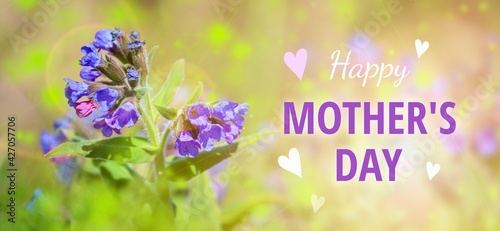 Congratulations Happy Mother's Day - nifty soft colors. Cool present concept.