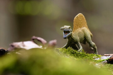 Fototapeta Dinosaurier im Wald