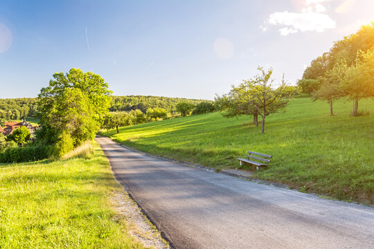 Hiking road in beautiful, lush green hilly spring landscape with scenic lens flare