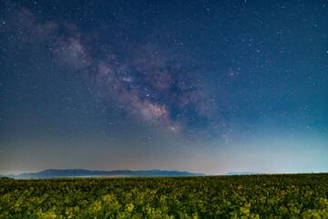 Fototapeta 春の天の川と満点の星空