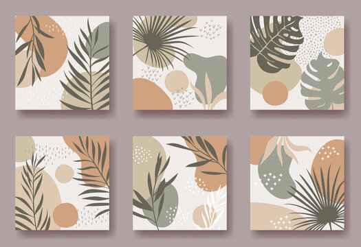 Set of six vector square backgrounds with abstract ornament and plants