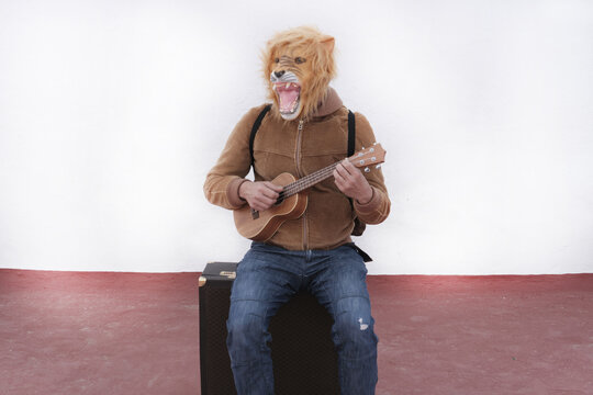 Man with a roaring lion full mask playing ukulele sitting on his briefcase on white background