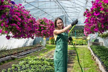 Fototapeta portrait of handsome woman gardener watering plants and flowers in greenhouse obraz