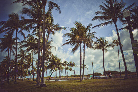 Miami Flordia