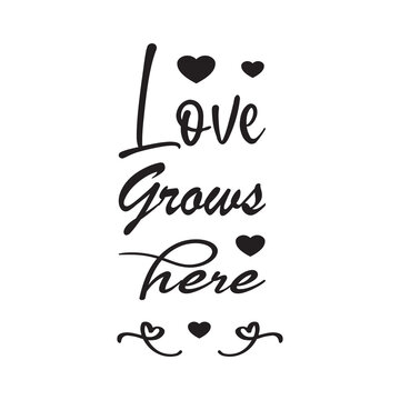 love grows here the quote letters