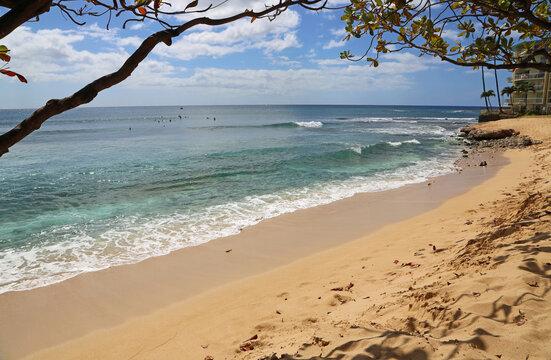 Under tree on Makaha Beach - Oahu, Hawaii