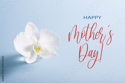 Happy Mother's Day text with white orchid in miniature vase on blue background