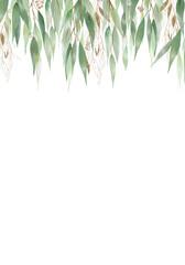 Fototapeta Pale leaves - botanical design banner. Floral pastel watercolor border frame