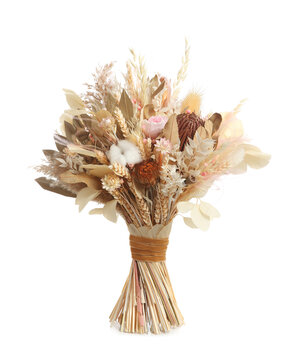 Beautiful dried flower bouquet isolated on white