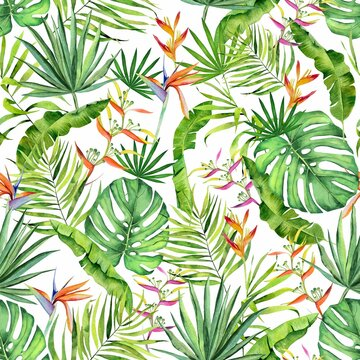 Watercolor tropical leaves and flowers pattern. Monstera, heliconia and  palm leaves handdrawn pattern on white. Colorfull pattern for design textile, wallpapers, prints and banners.