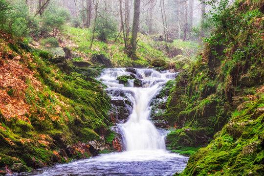 Romantischer Wasserfall auf der Hoegne im Hohen Venn