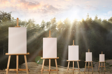 Fototapeta Wooden easels with blank canvases in forest on sunny day