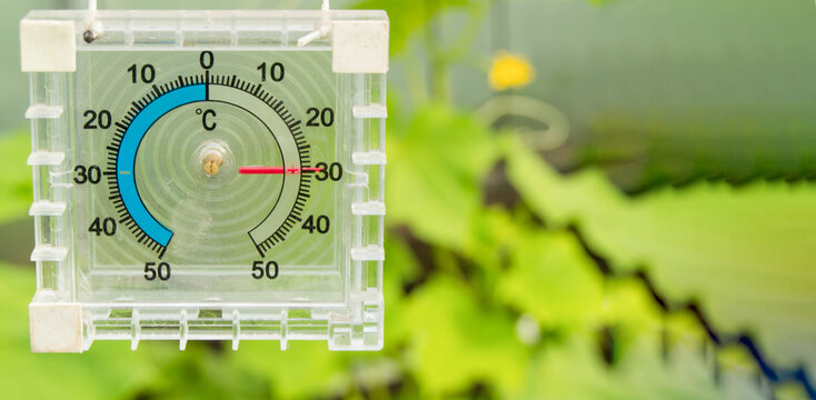 Thermometer for measuring air temperature in the greenhouse, banner, copy space, space for text