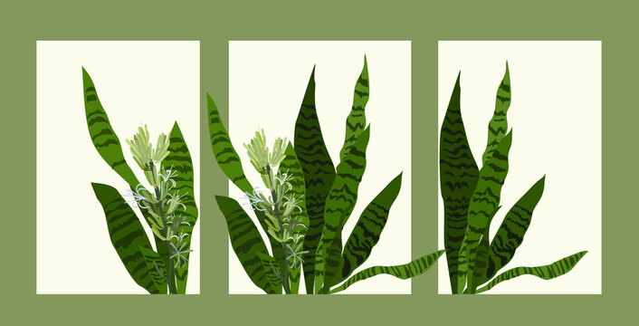 Set of contemporary art prints with abstract leaves . Modern vector design for posters, cards, packaging and more