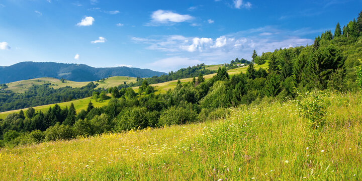 rural landscape in summer. beautiful nature scenery with fields on the hills rolling in to the distant valley. wonderful sunny weather with fluffy clouds on the sky