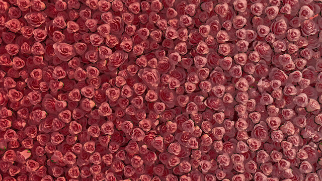 Elegant, Romantic Wall background with Roses. Bright, Floral Wallpaper with Red, Beautiful flowers. 3D Render