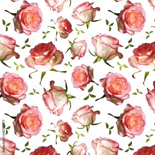 Seamless Pattern, print made of white and pink roses on white background. Flowers background. Happy Birthday, Happy Mother's Day, Wedding Day, Valentine's Day, International Women Day greeting card.