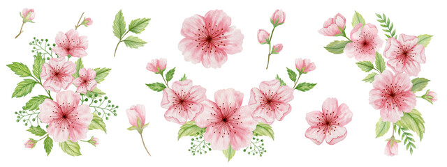 Cherry blossom watercolor set. Isolated flowers on a white background. Sakura bouquets. Fotomurales