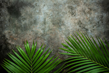 Wall Mural - Creative nature layout made of tropical leaves. Summer concept. Palm leaf on wall. Nature beach background layout with free text space.