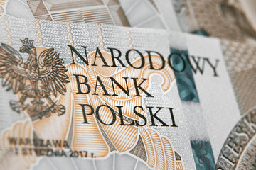 Obraz Close up on national polish bank of new Polish banknotes five hundred zloty. Macro photo of narodowy bank polski sign on PLN bill. Shallow focus. Close-up with fine and sharp texture - fototapety do salonu