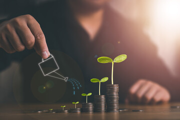 Fototapeta Growing Money, Plant On Coins, business finance and saving money investment concept, Businessman is Watering the plants on stacking coins.