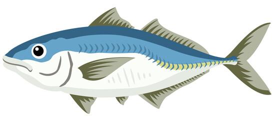 Fototapeta 魚/アジ