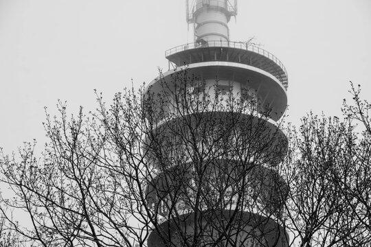 Glienicker Turm im Nebel