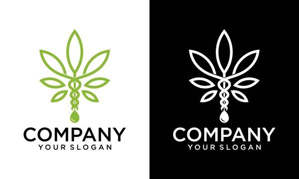 CBD oil leaf - Cannabidiol - CBD leaf - Hemp icon / logo template, Abstract Cannabis Oil, Marijuana Leaf, CBD, Hemp Pot Line Logo Design