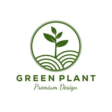 simple green plant gardening logo vector illustration design