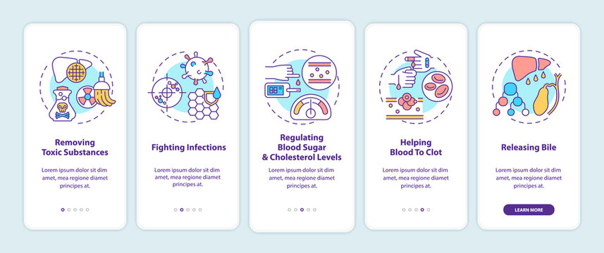 Liver functions onboarding mobile app page screen with concepts. Fighting infections, blood clots walkthrough 5 steps graphic instructions. UI, UX, GUI vector template with linear color illustrations