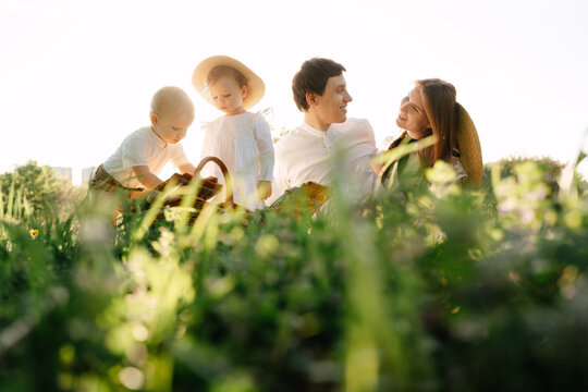 Happy married couple with children sit on a green meadow in a field bottom view horizontal. Healthy daughter and son get food from a basket for mom with dad.
