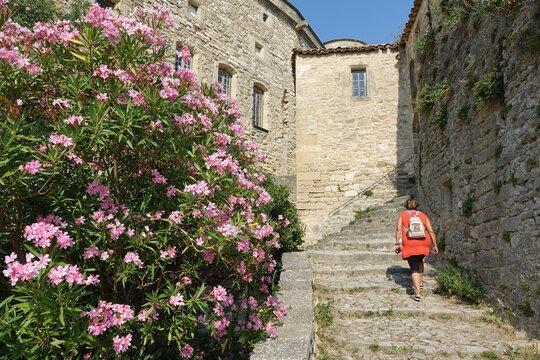 Am Schloss in Le Barroux, Provence