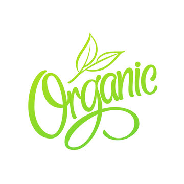 Organic Logo. Green lettering with leaves. Vector icon for label, package, grocery store design.