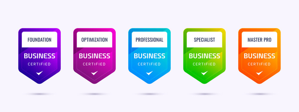 Set of business company training badge certification to determine based on colorful criteria. Vector illustration certified logo premium design.