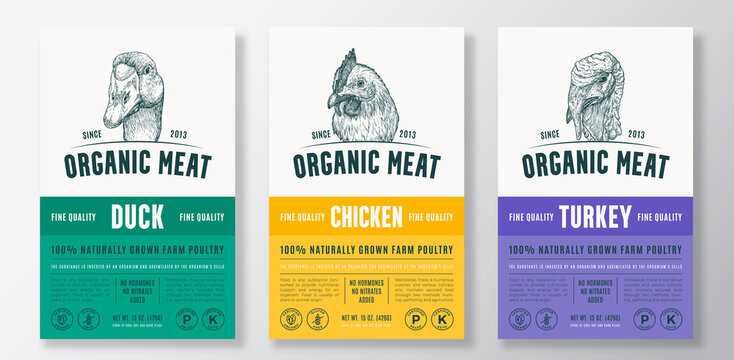 Organic Meat Abstract Vector Packaging Design or Label Templates Set. Farm Grown Poultry Banners. Modern Typography and Hand Drawn Chicken, Duck and Turkey Head Sketch Backgrounds Layout Collection