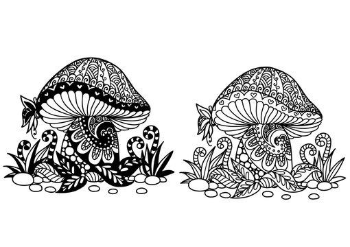 Two styles of mushroom for design element. Vector illustration