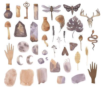 watercolor boho clipart practical magic clip art bohemian meadows celestial moon crystal spirit moth mystery dragonfly nuetral elements