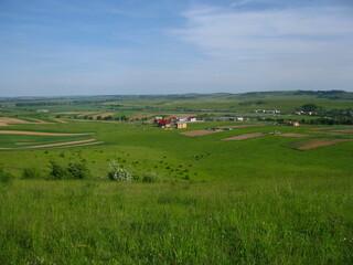 Widok na pola wśród zielonej trawy na tle niebieskiego nieba