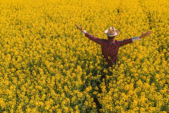 Proud successful oilseed rape farmer in blooming field