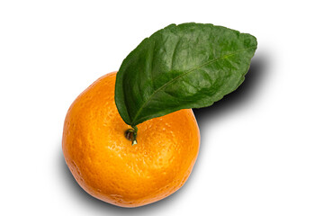 Fototapete - Top view of single mandarin orange or Citrus reticulata with leaf on white background with clipping path.