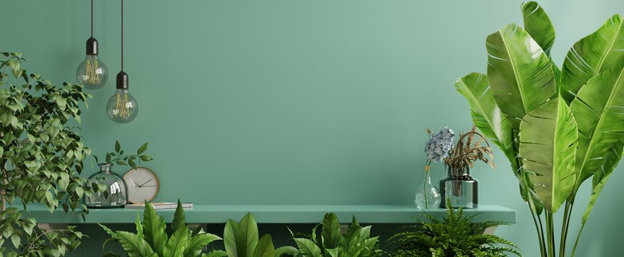 Interior wall mockup with green plant,Green wall and shelf.