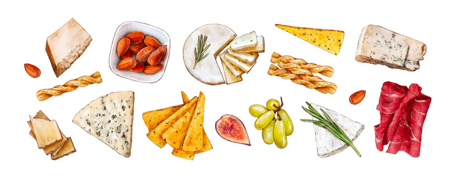 Various types of cheese and snacks. Blue cheese, parmesan, bread sticks, almonds, bacon, grapes isolated on white background. Hand painted watercolor hand drawn illustration. Healthy food