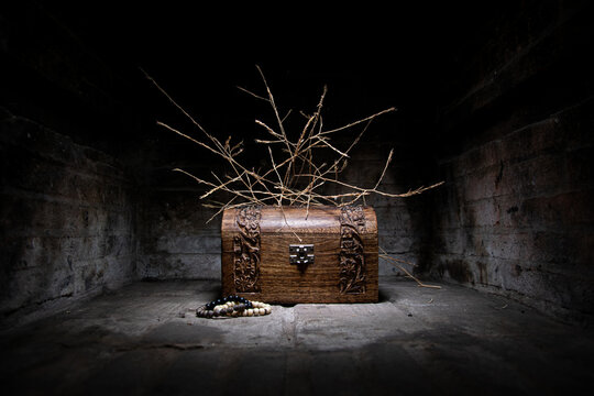 Vintage wooden chest with dry branches on a dark background