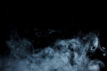 Fototapeta Abstract white smoke moves on black background. Beautiful swirling gray smoke.