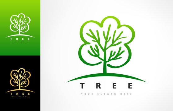 Tree logo vector. Plant Logo design vector nature illustration.