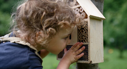 Fototapeta Small girl playing with bug and insect hotel in garden, sustainable lifestyle.
