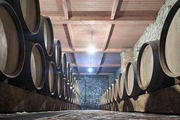 Fototapeta Row of oak barrels in a dry cool wine cellar in basement