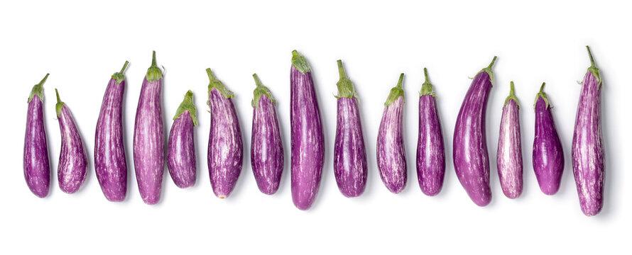 Fresh raw organic purple mini eggplants in a row isolated on white background